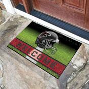 NFL - Atlanta Falcons 18x30 Crumb RubberDoor Mat
