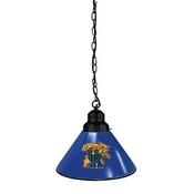 Kentucky Wildcat Pendant Light Fixture by Holland Bar Stool