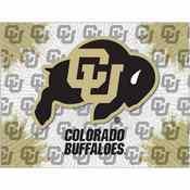 Colorado Logo Canvas by Holland Bar Stool Company