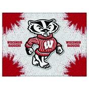 Wisconsin Badger Logo Canvas by Holland Bar Stool Company