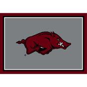 University Of Arkansas Spirit Rug