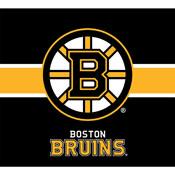 BOSTON BRUINS SINGLE GARAGE DOOR COVER